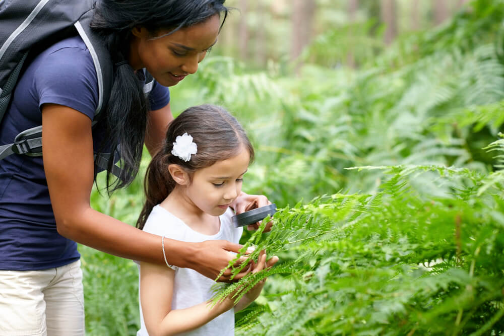 Mother and daughter in the forest looking at ferns through a magnifying glass.